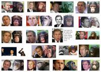 Le chaînon manquant entre l'homme et le singe