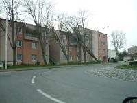 Tempête du samedi 24 janvier 2009 à Tournefeuille