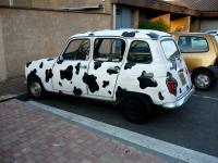 Voiture vache